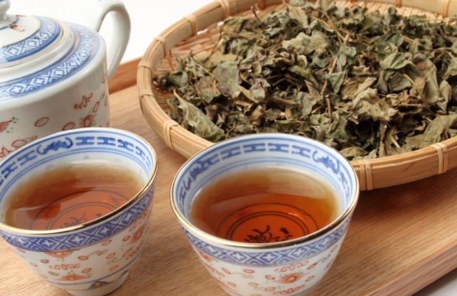 肝臓に良いお茶
