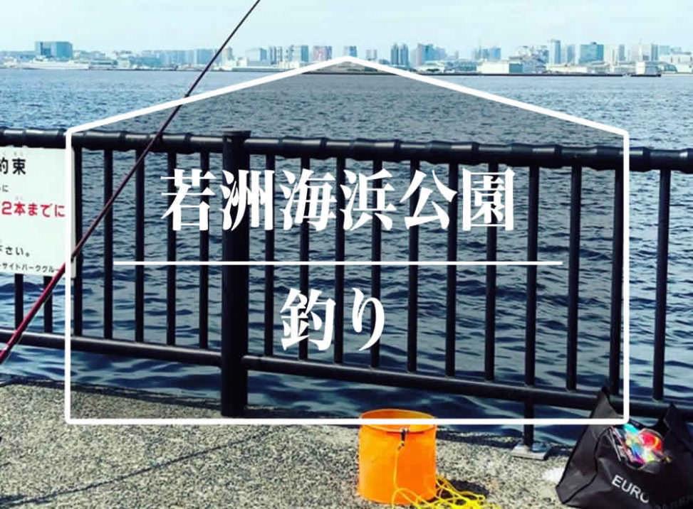 若洲海浜公園 釣り 釣果
